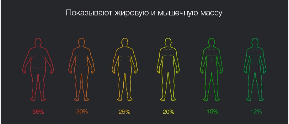 Mi Body Composition Scale 2 индексы